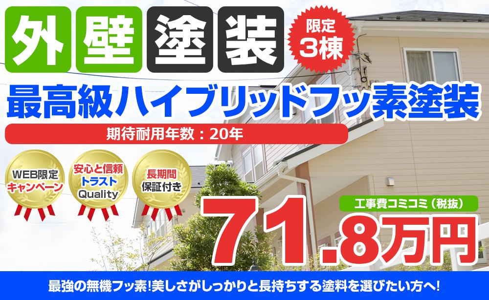 最高級ハイブリッドフッ素塗装 71.8万円